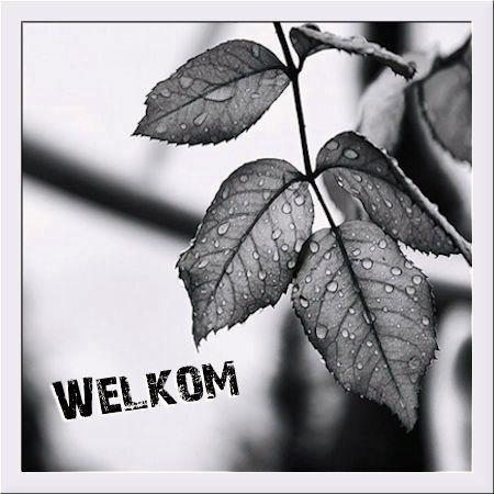 Herfst-ZW-Welkom.jpg